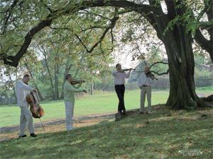 Talich Quartet playing in the gardenCredit: Guy Vivien
