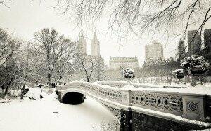 Winter in New YorkCredit: http://www.desktopwallpapers4.me/