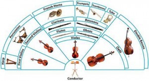 Orchestra sections