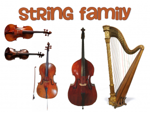 string family of an orchestra