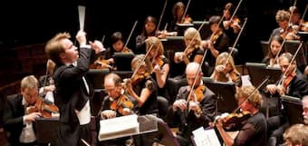 Violin section of a symphony orchestra