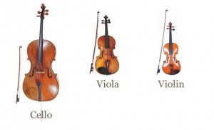 Violin - Viola - Cello