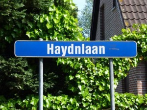 Haydn Lane