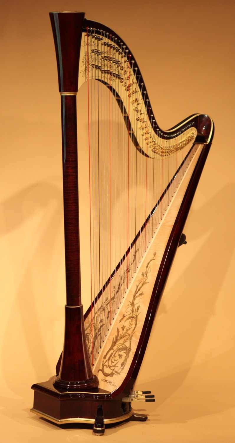 Instrument of the Orchestra XIV: Other