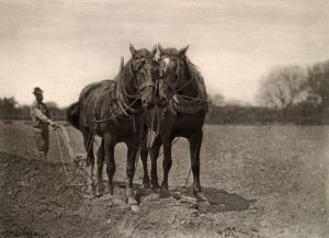 A Team Ploughing, Peter Henry Emerson, 1887