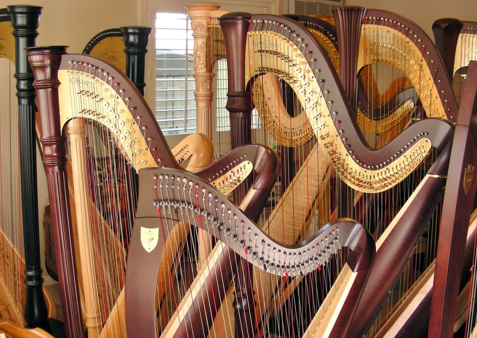 Unsung Concertos <br/>Francesco Petrini: <em>Harp Concerto No. 1</em>, Op. 25
