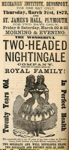 Two-Headed Nightingale