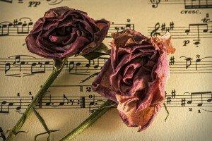 © MusicOomph.com