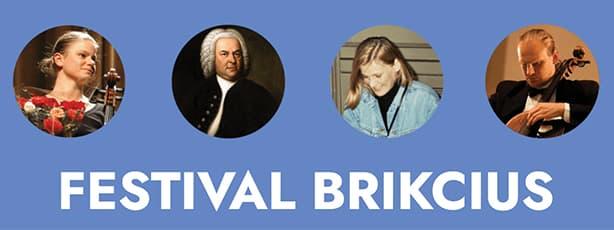 Festival Brikcius