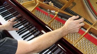 While regular tuning is a significant part of piano care, there are a number of other aspects which need attention.