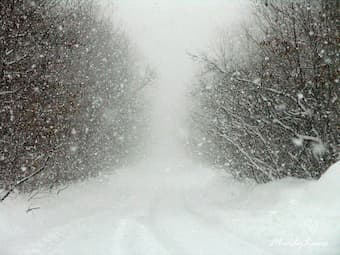 How is snowstorm portrayed in different piano repertoire?