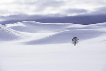 Listen to atmospheric piano pieces that evoke the winter season