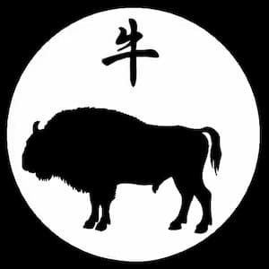 The year of ox