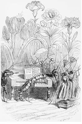 Grandville: The Centipede Pianist