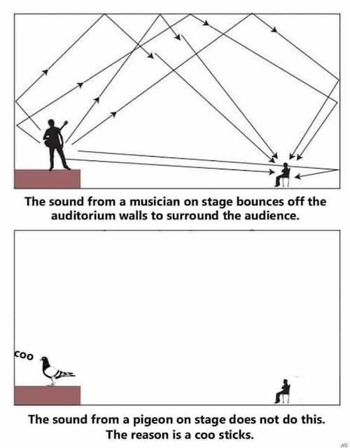 An Analysis on Auditorium Acoustics