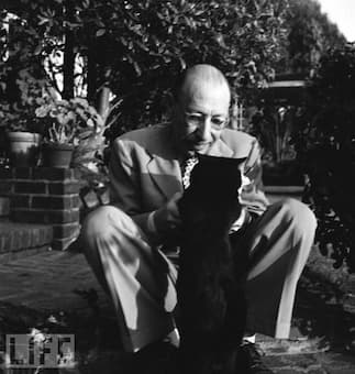 Stravinsky and his cat